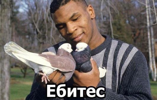 https://memoteka.com/images/e/e0/Ебитес4.jpg